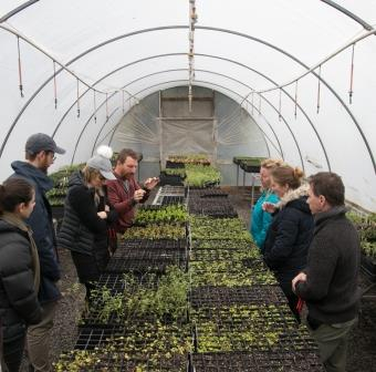 Class participants looking at seedlings in a greenhouse